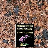 Orchid Bark, Orchid Soil, Orchid Compost, Orchid Plants, 10 mm Washed Coco Husk Chips + Charcoal, オーキッド植物のためのオーキッド樹皮土堆肥、良い排水のために木炭と混合された100%有機ココナッツ殻チップ。 Phalaenopsis, Moth Orchid, Zygopetalum 用の小型ココナッツチップ。(5 Litres)