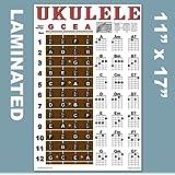 "Laminated Ukulele Fretboard Notes & Easy Beginner Chord Chart 11""x17"" Instructional Poster for Soprano Concert Tenor Uke by A"