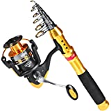 Proberos Fishing Rod & Reel Combos Full Kit Telescopic Fishing Pole + Spinning Reels with Fishing Carrier Bag for Saltwater F