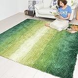 なかね家具 グラデーションシャギーラグ おしゃれ ホットカーペット対応 グリーン 200×200 325gran