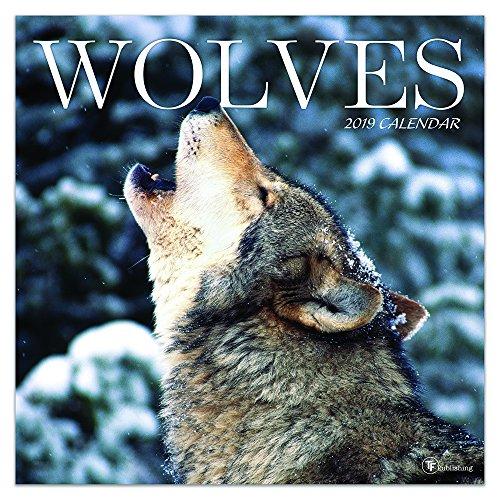 Wolves 2019 Calendar