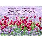 ガーデニングの花2011