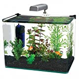 Penn Plax Curved Corner Glass Aquarium Kit, 10-Gallon by Penn-Plax