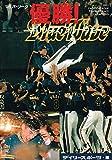 '95パ・リーグ優勝!オリックス・ブルーウェーブ 画像