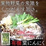 【国産】 【有機】 【無農薬】 冷凍葉にんにく 150g (冷凍)