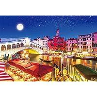1000ピース 光るジグソーパズル 世界遺産 月夜のヴェネツィア(49x72cm)