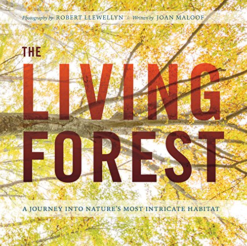 The Living Forest: A Journey Into the Heart of the Woods (English Edition)