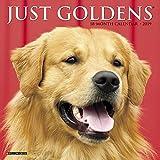 「Just Goldens 2019 Calendar」のサムネイル画像