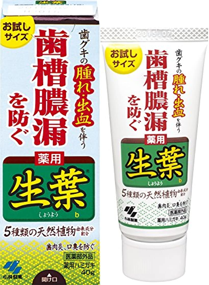 ペルー契約ブース生葉(しょうよう)お試しサイズ 歯槽膿漏を防ぐ 薬用ハミガキ ハーブミント味 40g 【医薬部外品】