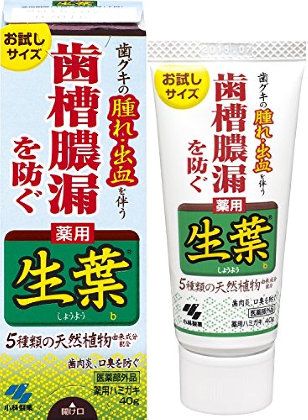 出席自動的に穀物生葉(しょうよう)お試しサイズ 歯槽膿漏を防ぐ 薬用ハミガキ ハーブミント味 40g 【医薬部外品】