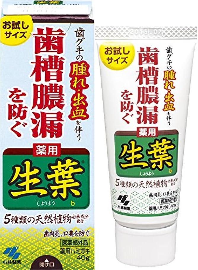 並外れてキャッシュより多い生葉(しょうよう)お試しサイズ 歯槽膿漏を防ぐ 薬用ハミガキ ハーブミント味 40g 【医薬部外品】