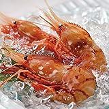 ボタンエビ 天然ロシア産 特大 生ぼたんえび お刺身 お寿司 海鮮丼 (1kg26-30本)