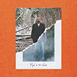 MAN OF THE WOODS [2LP] (140 GRAM BLACK VINYL, GATEFOLD) [12 inch Analog]