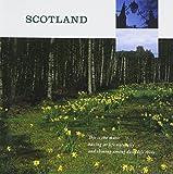 暮らしの音楽 スコットランド