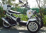 IceBear(アイスベアー) リバーストライク 150cc逆三輪 逆トライク バイク ズーマー風 普通免許 白 HL150DZW