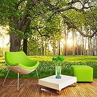 LJJLM 壁画の壁紙森の木日当たりの良い草原3D風景テレビの背景壁画リビングルームウォールペーパー家の装飾-200X150CM