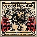 サウンド・オブ・ニューヨーク・ザ・リターン・オブ・オールド・スクール・ヒップ・ホップ ミックスド・バイ・MR.ITAGAKI A.K.A.ITA-CHO