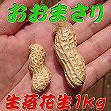 『生落花生 おおまさり 1kg』茹で落花生に最適!29年度千葉県産のジャンボピーナッツ♪