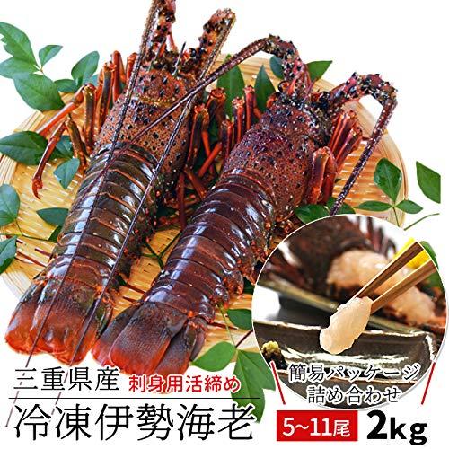 三重県産 伊勢海老 詰合せ 5尾で約2kg 刺身用 瞬間 冷凍 伊勢エビ