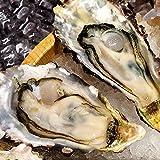 刺身用 生食用カキ 北海道産プレミア牡蠣 大サイズ10個入 (4パック)