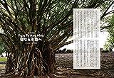 Coyote No.67 特集 はじまりの島  ポリネシア、創世の旅をする 画像