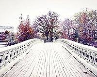 Central Park New York City photography Bow Bridge travel decor 8x10 inch print [並行輸入品]
