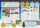 小学館の図鑑Z 日本魚類館: ~精緻な写真と詳しい解説~ 画像