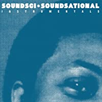 Soundsational: Instrumentals [12 inch Analog]