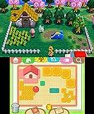 どうぶつの森 ハッピーホームデザイナー - 3DS_05
