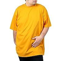 PRO CLUB(プロクラブ) 大きいサイズ メンズ ヘビーウェイト Tシャツ 無地 #101