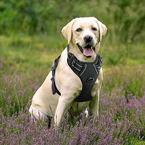 Rabbitgoo 犬 ハーネス 中型犬8-23KG 胴輪 ソフト 首輪 リード 簡単着脱 調節可能 歩行補助 引っ張り防止