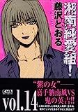 湘南純愛組! vol.14 (講談社漫画文庫)