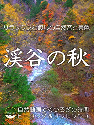 リラックスと癒しの自然音と景色 渓谷の秋 自然動画でくつろぎの時間 ヒーリング&リフレッシュ