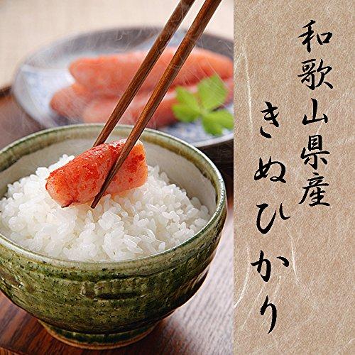 令和元年産 和歌山産 キヌヒカリ 玄米 紀州米 各種サイズ 精米可 (5分搗き, 13.5kg)