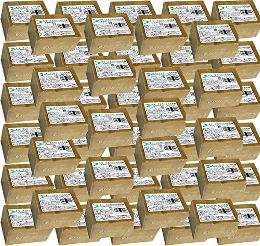 実行可能退屈な政治家のオリーブとローレルの石鹸(ノーマル)50個セット [並行輸入品]