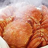 魚耕 毛ガニ 北海道 近海産 特大 ボイル 500g前後×2尾 最高級3特グレード堅蟹 ギフト
