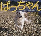 ばっちゃん―助けられた繁殖犬たち 画像