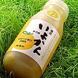 極々果実ジュースAセット(伊予柑6本)