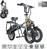 電動自転車 折りたたみ式3輪電動自転車 LEDディスプレイ付き 2リチウムイオン電池(36V 350W 10.4AH)ブラシレスモーター 3ブレーキ 70-80Km,黒