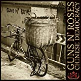 CHINESE DEMOCRACY 画像