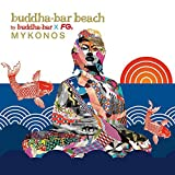 Buddha Bar Beach Mykonos