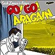 大瀧詠一 Cover Book -ネクスト・ジェネレーション編- 『GO! GO! ARAGAIN』
