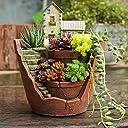 moiitee カクタス 多肉 植物 鉢 室内 プランター おしゃれ 観葉植物 古風 城 懐かしい 誕生日 プレゼント 飾り