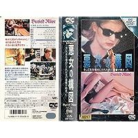 Amazon.co.jp: ティム・マシスン...
