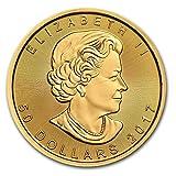 31.1 グラム 純金 カナダ メイプルリーフ 50ドル 金 ゴールド コイン 24K 1オンス 金塊 金地金 インゴット 金貨 カプセル クリアーケース付き