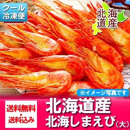 北海シマエビ 北海道 しまえび 500 g (23尾前後・大サイズ) 北海シマエビ 送料無料
