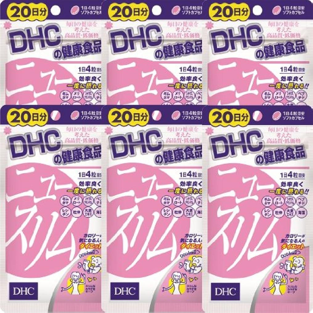 厚さ暗黙現金DHC ニュースリム 20日分(80粒)×6個