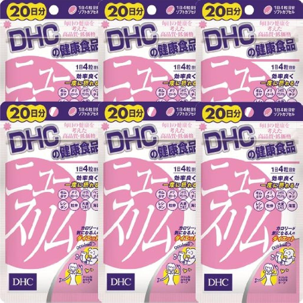 鯨通知スタンドDHC ニュースリム 20日分(80粒)×6個
