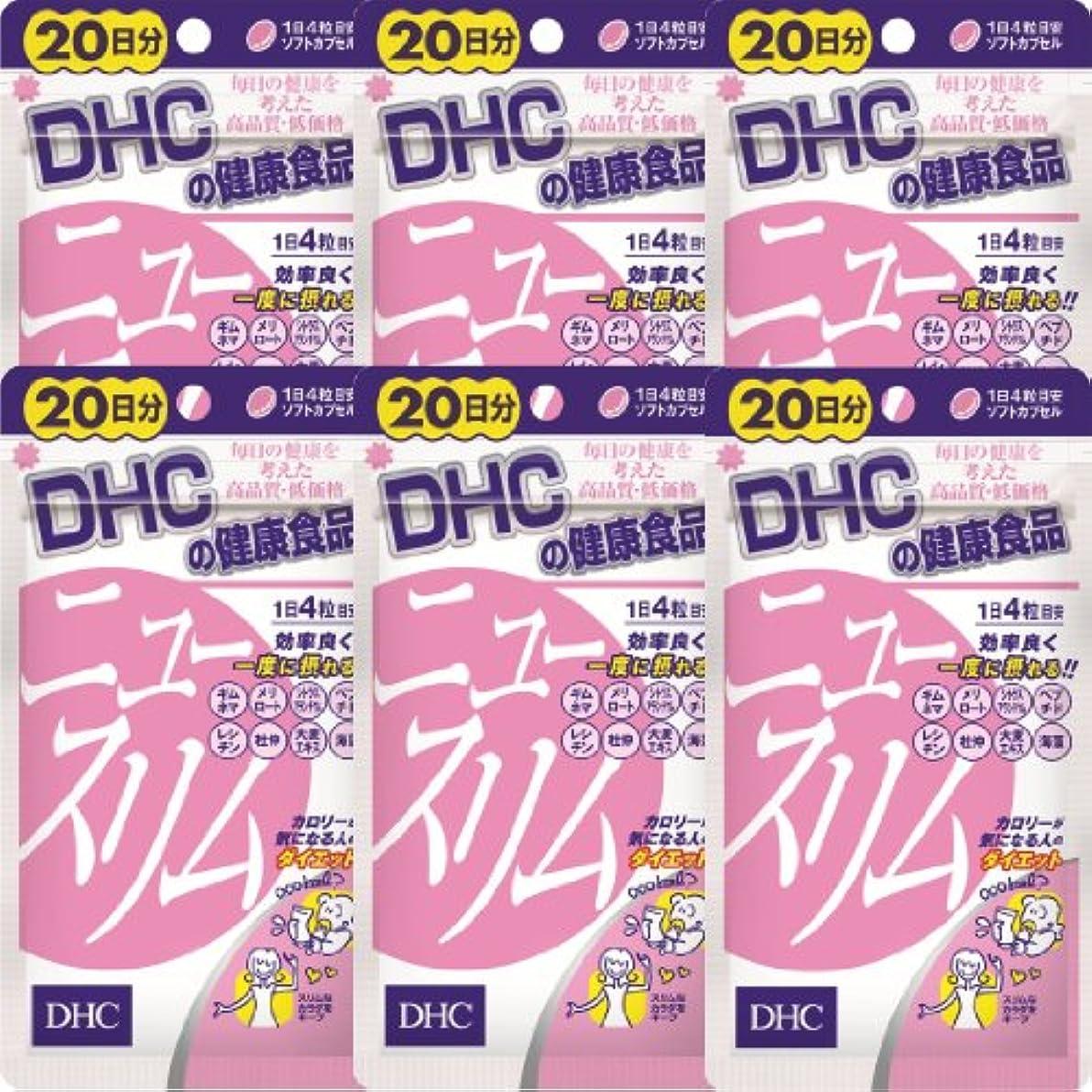 再撮り降伏コンピューターゲームをプレイするDHC ニュースリム 20日分(80粒)×6個