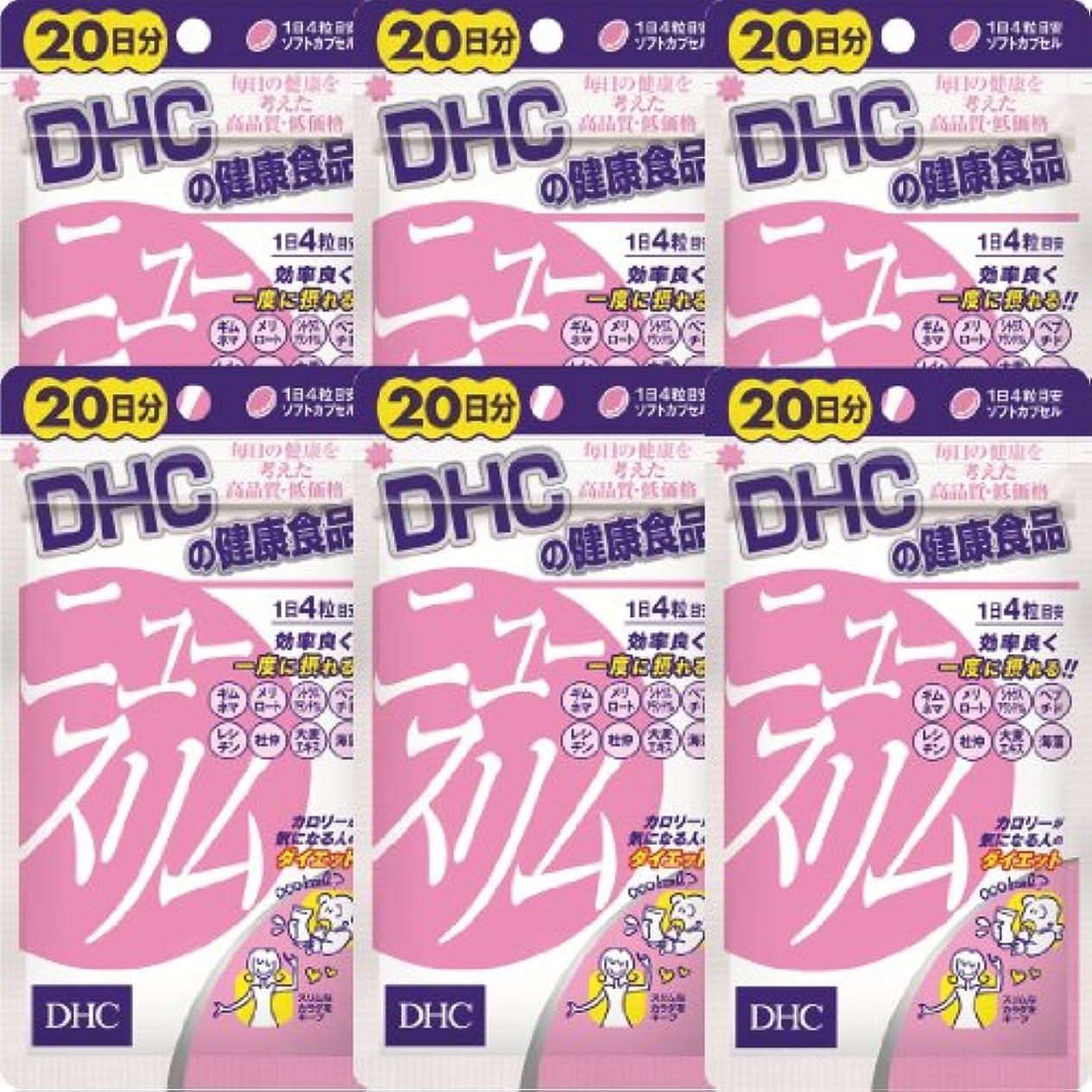不快なビン紫のDHC ニュースリム 20日分(80粒)×6個
